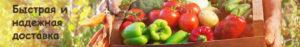 Опоры для растений, опоры для цветов, стеклопластиковая арматура, садовые колышки